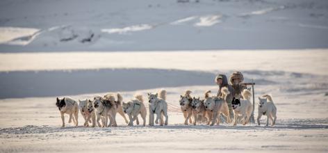 Mads Pihl - Visit Greenland